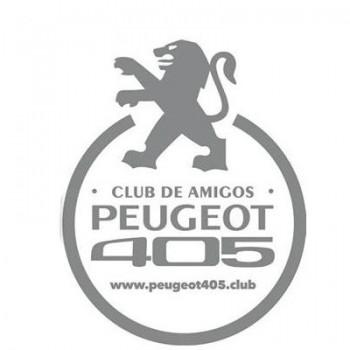 CA PEUGOT 405